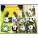 PERSO.SHEET: Birth of the 1st panda baby in Thailand,...