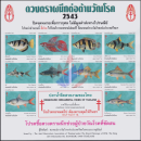Anti-Tuberculosis Foundation, 2543 (2000), freshwater fish, Thailand (MNH)