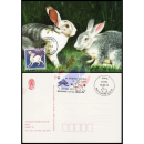 Chinese New Year: Year of the RABBIT (2948I) -MAXIMUM CARD-