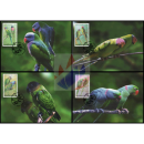 Parrots -MAXIMUM CARDS-