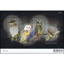 Nocturnal Bird (Owl) - The Night Hunter (308)