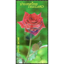 Rose - A Symbol of Love and Relationships (2877)