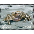 Crab´s -FDC(I)-