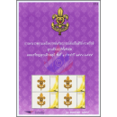 PERSONALIZED SHEET: Scout Thailand -PS(045)- (MNH)