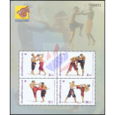 CHINA 2003, Mianyang: Thai-Boxen (168I)