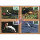 Waterfowls -MAXIMUM CARDS-