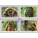 Worldwide Nature Conservation: Handed Gibbon