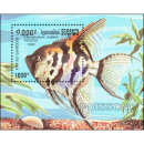 Ornamental fish (188)